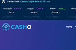 Invest site casho - Status Scam - start 2020-09-10 - plan 0.13% Hourly Up to 250%