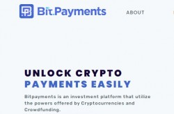 Invest site bitpayments - Status Paying - start 2021-02-17 - plan  5% - 6% daily for 30 days