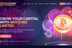 Invest site bkicoins - Status Not Monitored - start 2019-06-13 - plan 2.95% HOURLY For 36 Hours