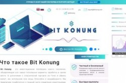 Invest site bitkonung - Status Scam - start 2019-08-17 - plan 4.00% daily forever
